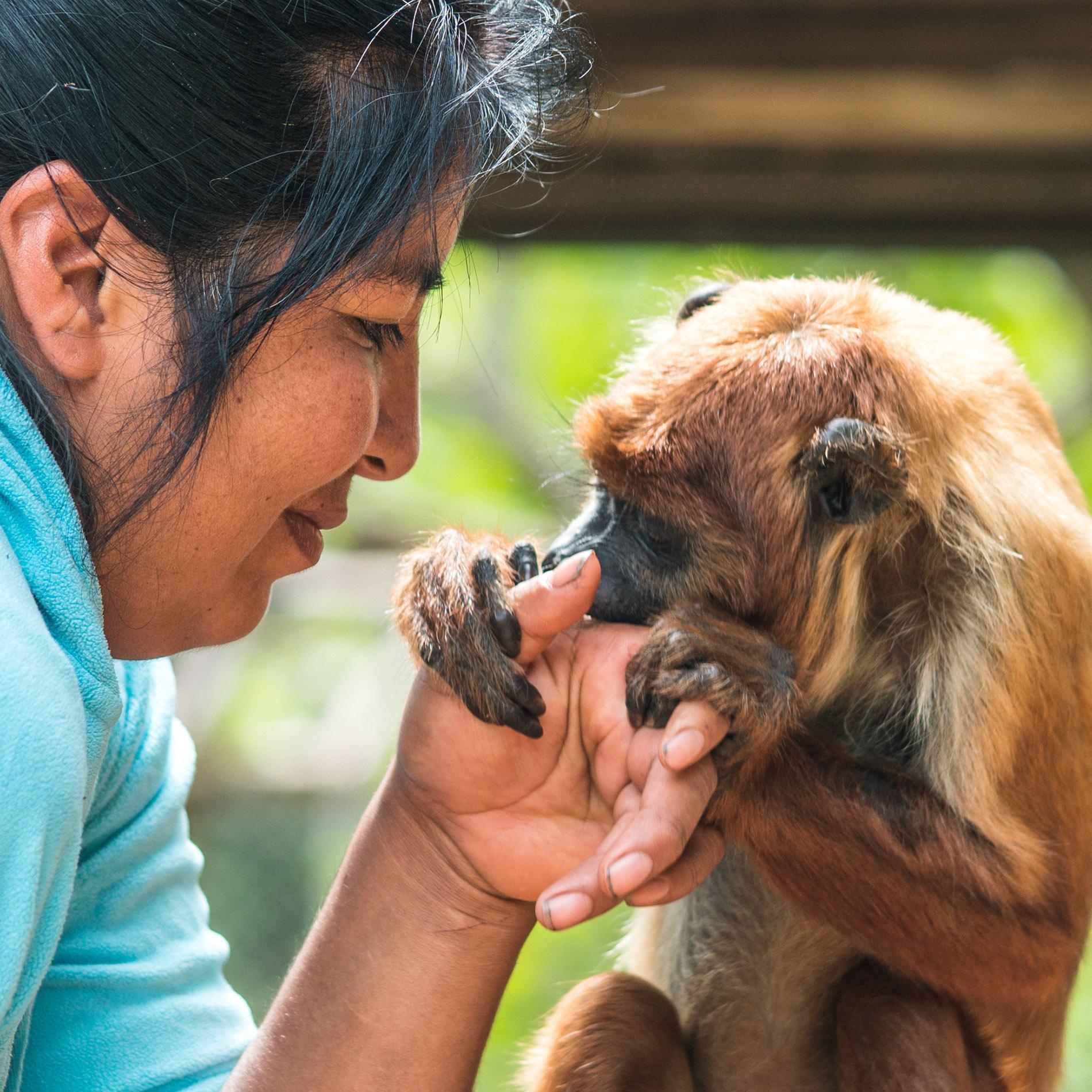 Volunteering Jacha Inti Animal Shelter Samaipata